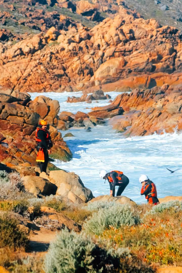 Explore the rugged coastline