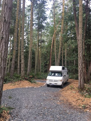 Blyn Woods Retreat - Primitive Camp on the OP
