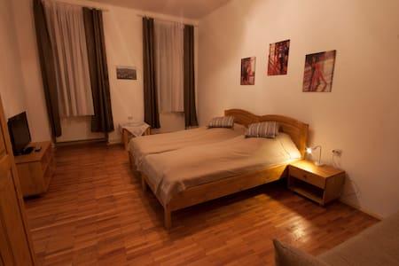 Fabini Junior-Suite 2 - Mediaș - 家庭式旅館