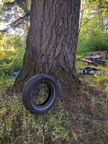 Tire swing and treehouse behind it.