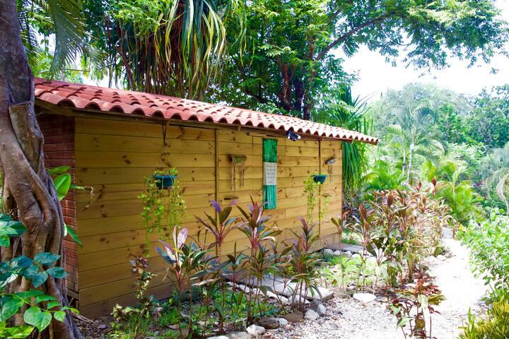 *Colibri Room*Rio Carmen Guesthouse - Malpaís - Cabane