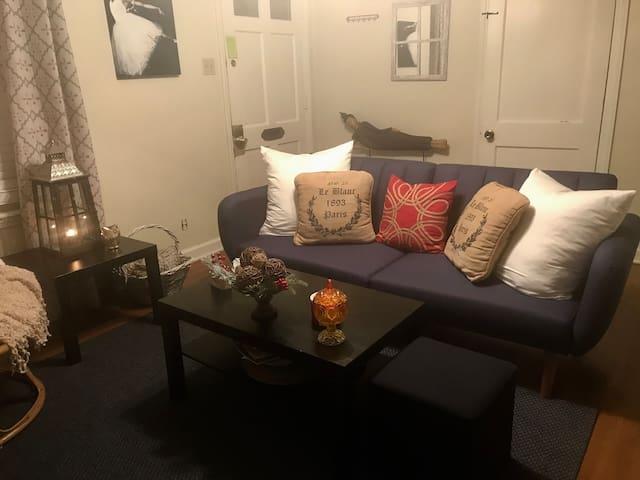 Quaint, Cozy, safe, one bedroom in Midtown Memphis
