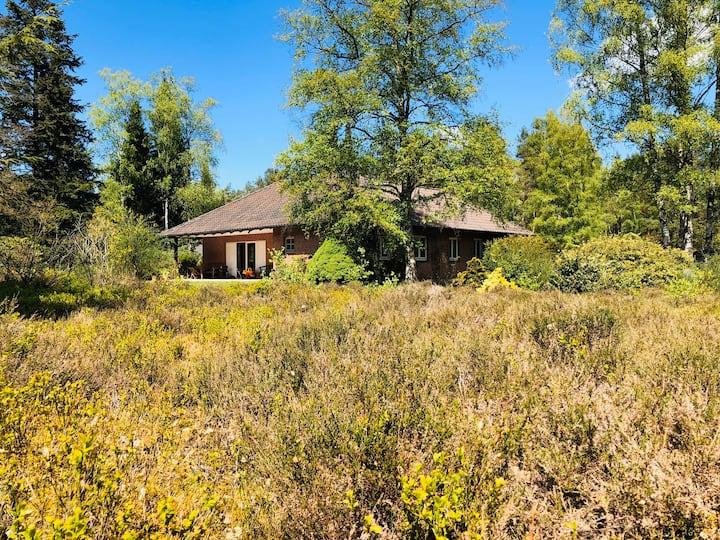 Landhaus mitten in der Heide / Natur pur