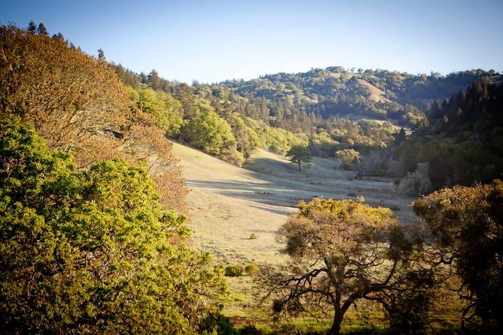 Bell Valley Vista