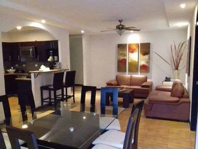 2 Room Apt. Furnished in San Pedro3