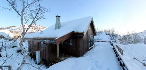 Flott hytte på Ljosland ca.740 m.o.h. Hund tillatt