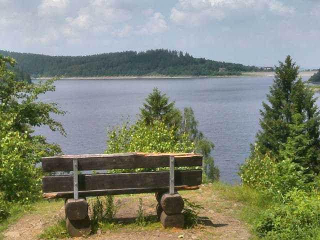 Ferienwohnung Harzer Ruhe - Altenau - Pis