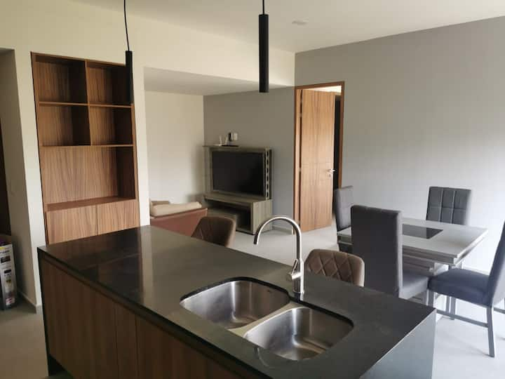 Brand-new luxurious 2 BDRM condo (Zona Financiera)