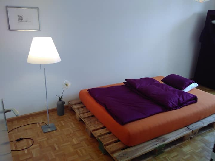 Nice room in modern central appartement