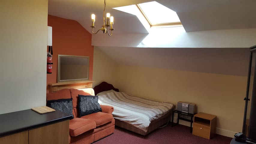 Large room, private bathroom and free parking.