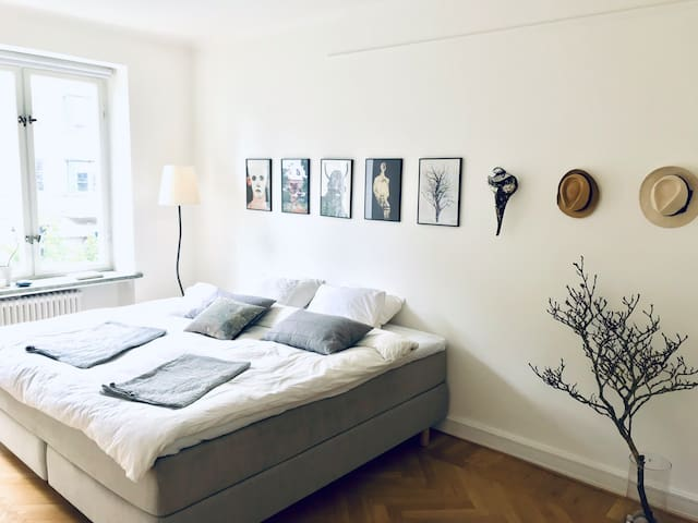 Spacious apt in the best area of central Malmö!