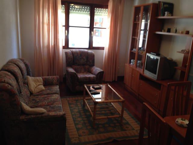 Apartamento en Potes,ideal Turistas Año Jubilar - Potes - Apartment