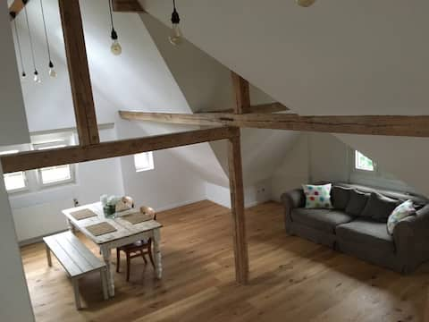 Charming newly renovated flat in central Zug