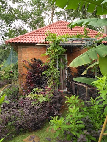 House in the garden - Phu Quoc - Dům