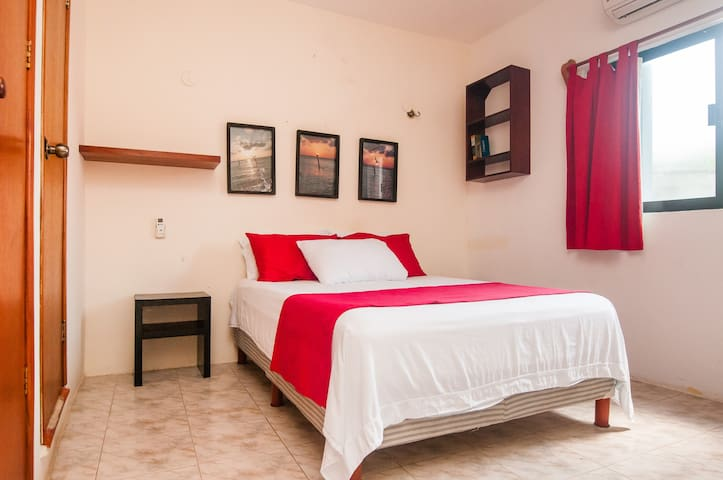 "Ocean view Apartment ""Blanca Guadalupe"" 2 rooms - Isla Mujeres - House"