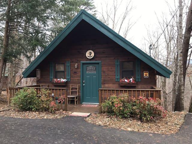 Pet Friendly, Hot Tub, Mountain View's, Cozy Cabin