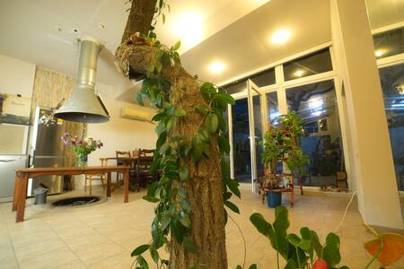 Artistic House (Tree House) - Jerevan - Byt