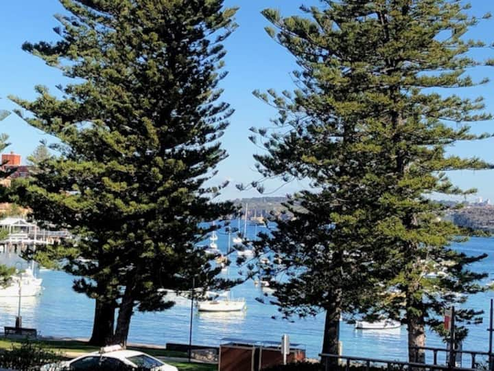 Manly Cove on the Water