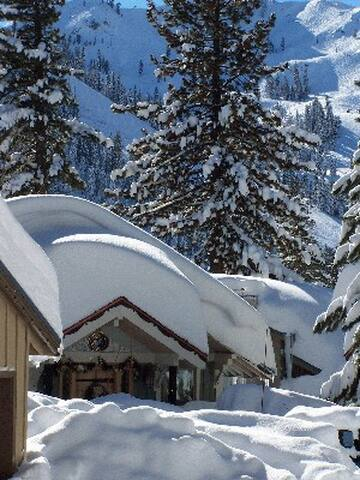 Big, Squaw Vly Ski Chalet, 10 minute walk to lifts - Olympic Valley - House