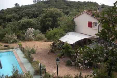 Chambre colorée dans maison de campagne isolée . - Tornac - Bed & Breakfast