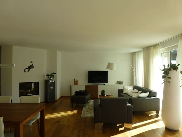modern flat rural area of zurich - Lufingen