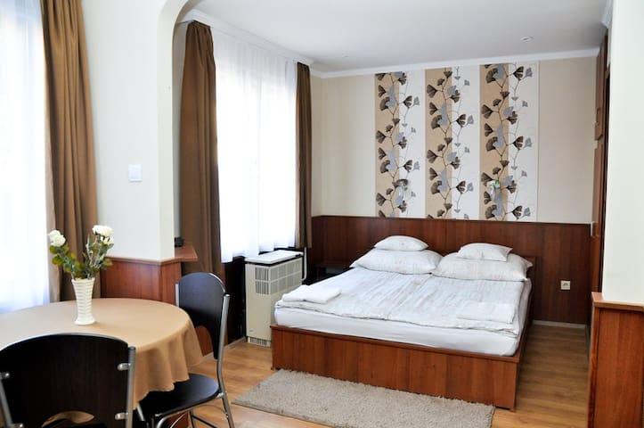 Kétszemélyes apartman a földszinten - Hajdúszoboszló - Andere