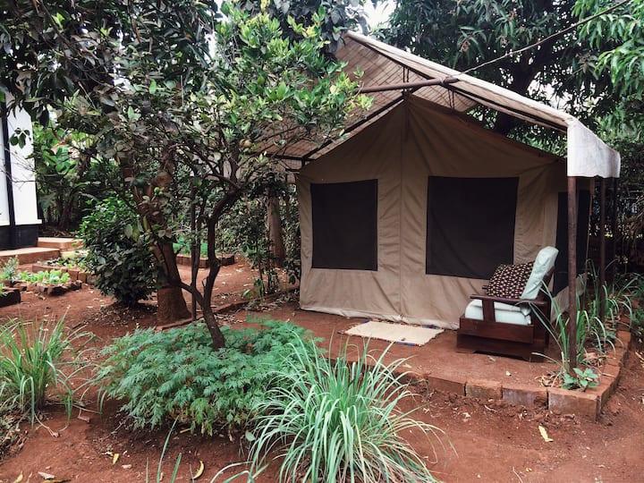Shirikisha | Glamping Tent B