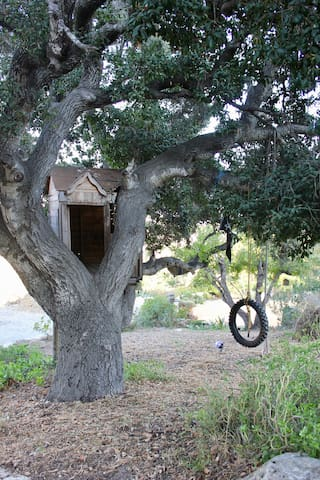 Tree house and tire swing