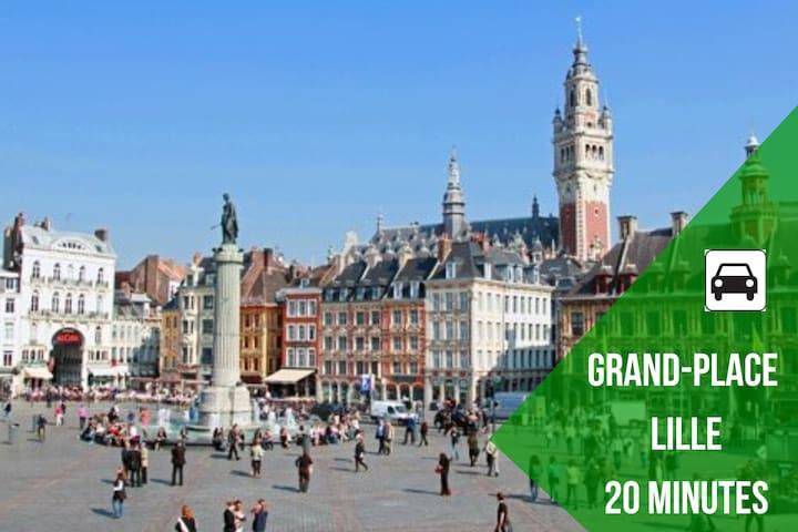 Grand place de Lille.  Très belle ville à visiter à 30 minutes en métro