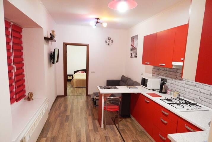 Современная квартира в центре - L'viv - Apartment