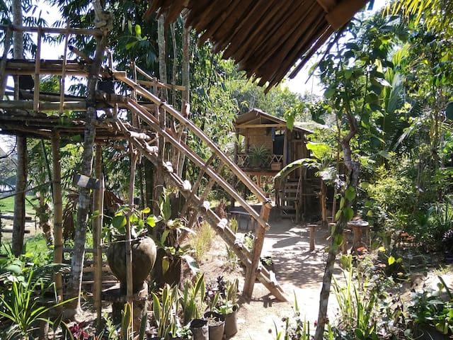 Secret Garden Bungalows #1