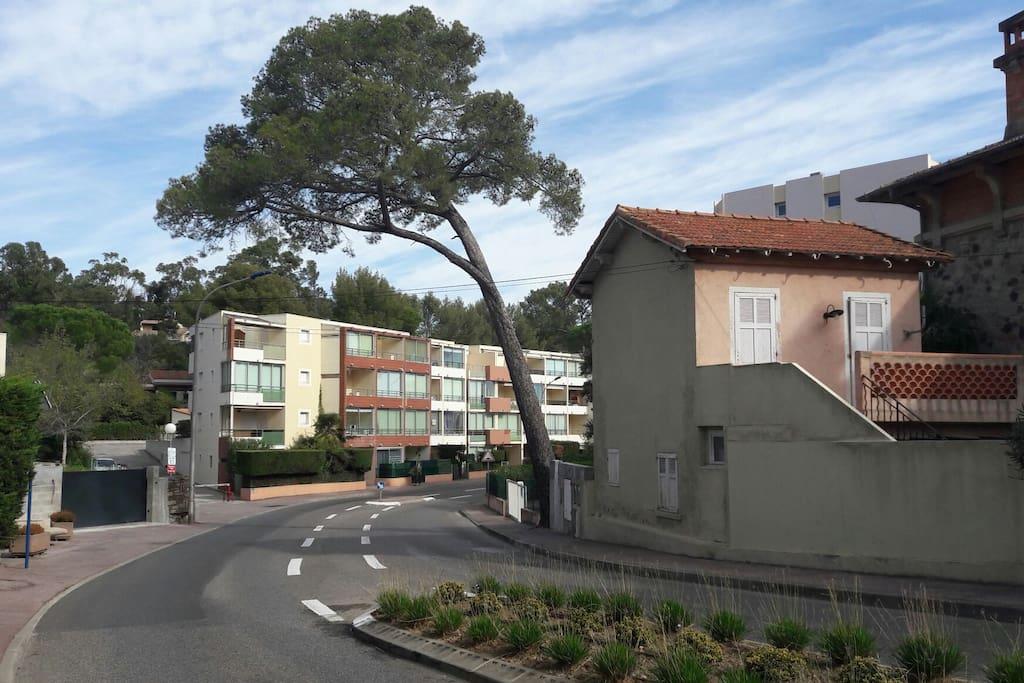 Avenue Frédéric Mistral