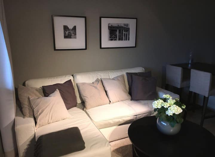 Central newly renovated 1 bedroom apartment