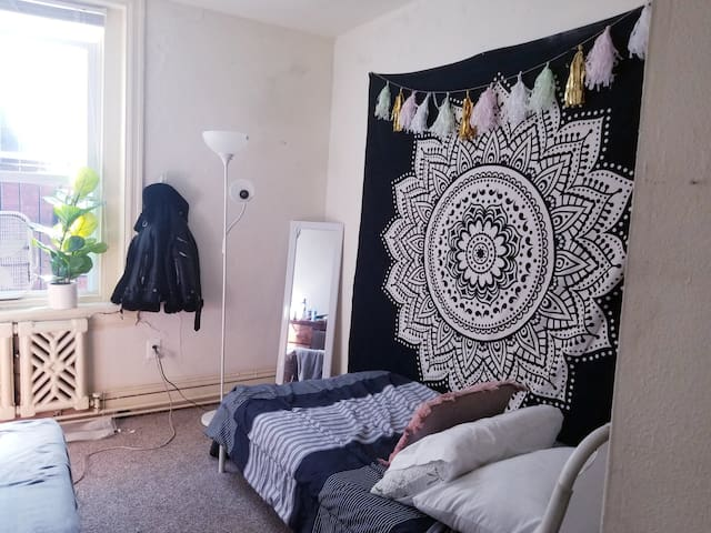 Cute, cozy room in the heart of University City