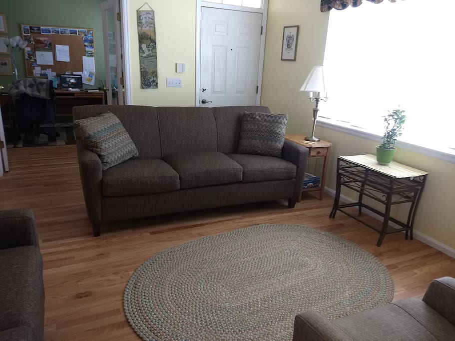 Living room-feel free to hang out & talk