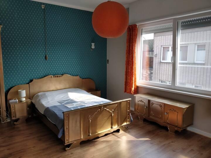 Mooie kamer in het centrum van de stad (goldroom)