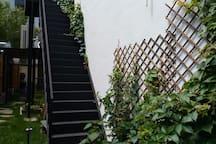 花园绿意盎然