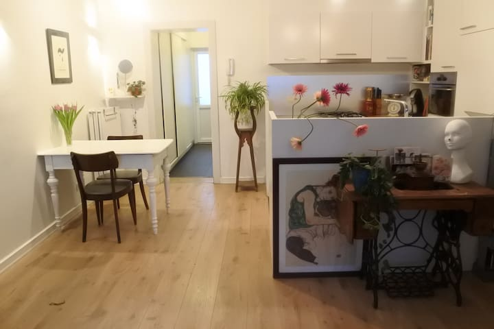 charming appartment near central station - Antwerpia - Apartament