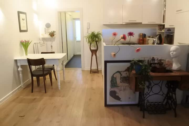 charming appartment near central station