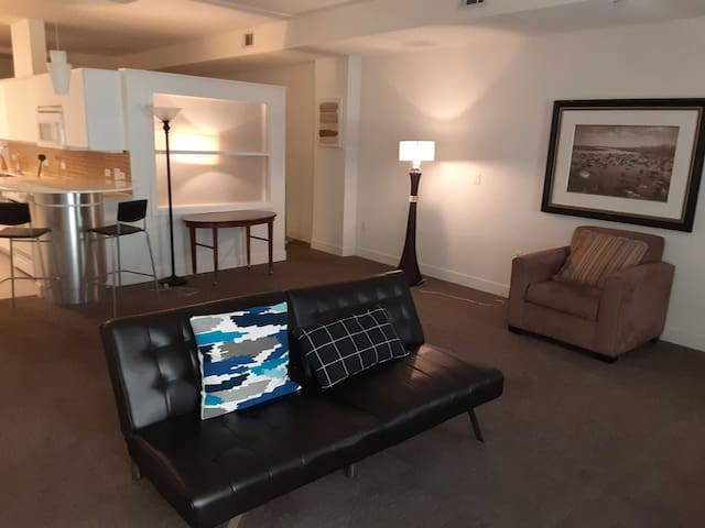 Downtown Dallas Good Value 1BR Apartment