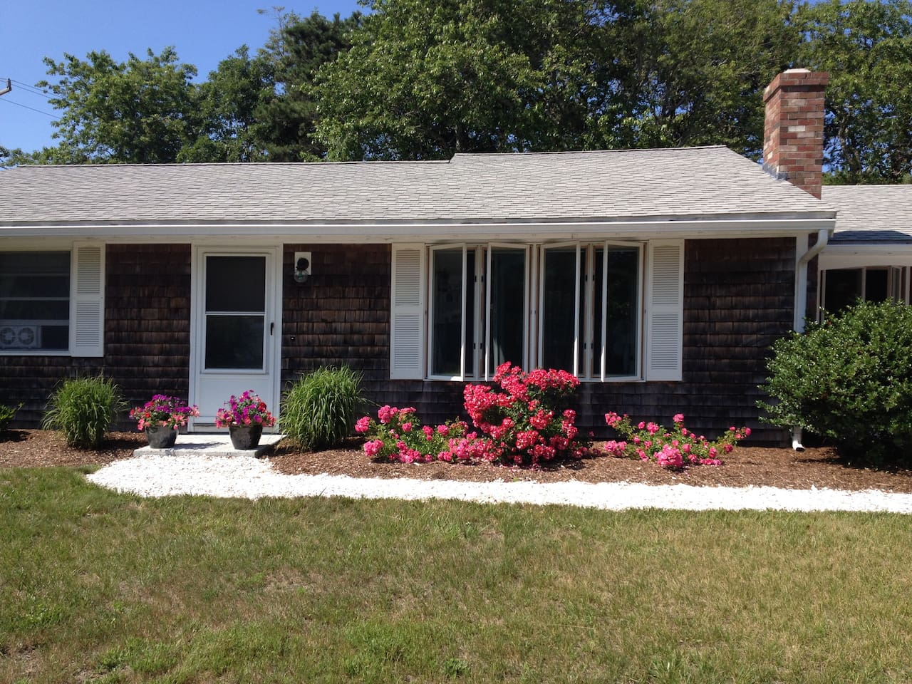 Front of house with roses in Bloom.