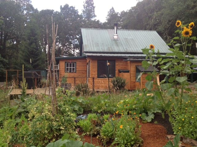 Unique Cabin 15 minutes from U of O and Downtown