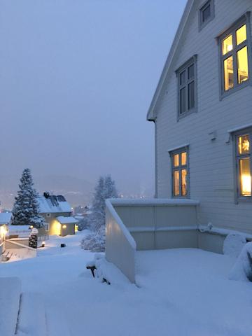 Wintertime - 22.december