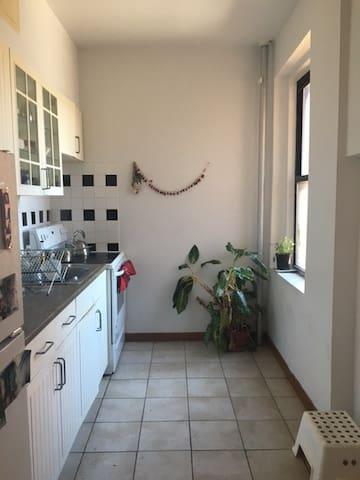 Zen and spacious bright 2 bdrm apt - Nova York - Apartamento