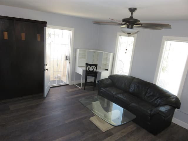 Living Room - with murphy bed on wall