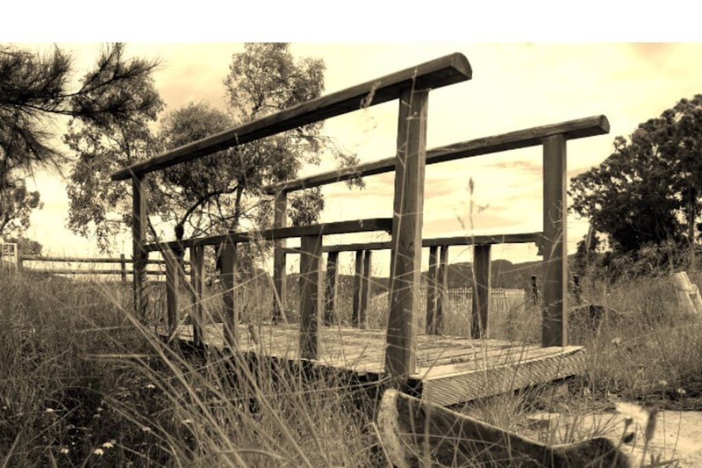 The creek may be dry right now but sit near the bridge enjoying the views and the smell of the lavender ..