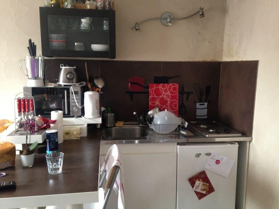 Espace cuisine avec micro-ondes, frigo et freezer