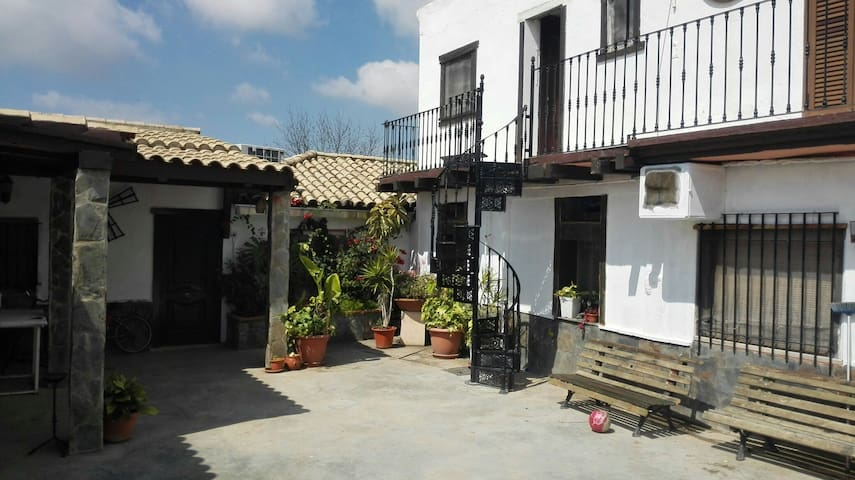 Habitación 5 Cañada del León - Jerez de la Frontera - Apartment
