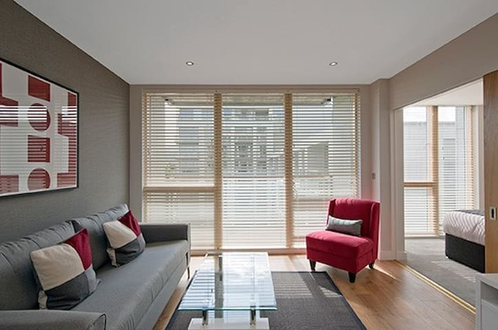 Entire One Bedroom Apartment in Central Park