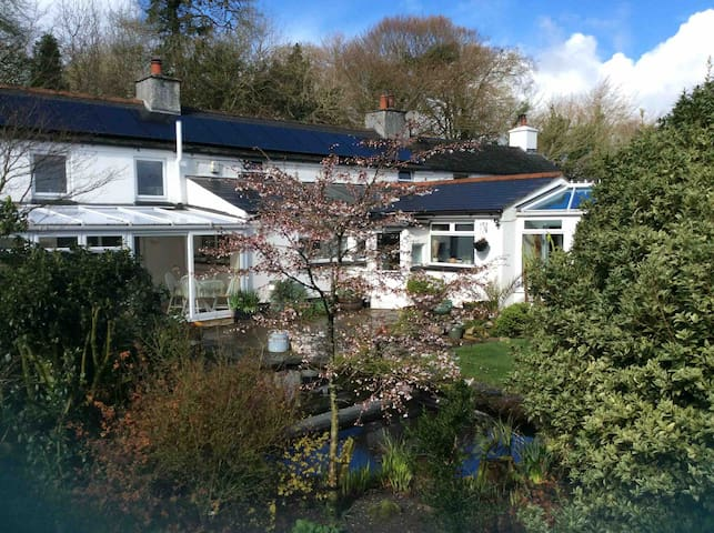 Cherry Tree Cottage, Kingsize bedroom nr Tavistock